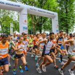 cw_sportmanagement_TomGroeschel_HDR Ddorf18-5735